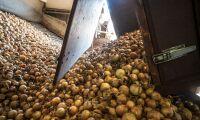 Anställd blev klämd – odlare får böter