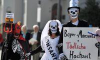 Störtfall för Bayers aktie efter glyfosatdom