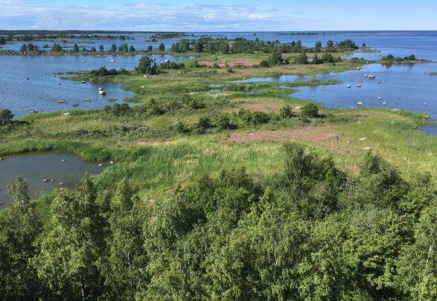 Kvarkens skärgård består av många små öar med grunda sund emellan. Naturen är klassad som världsarv av Unesco.