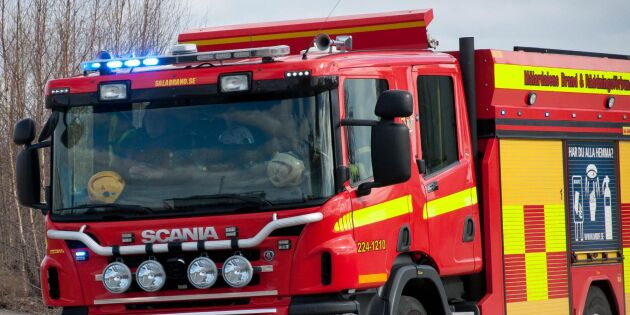 100 kor innebrända i ladugård på Gotland