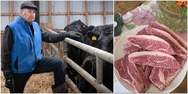 Stort sug efter skånsk-japanskt premiumkött