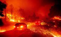 Svåra skogsbränder i Mexiko och Kalifornien