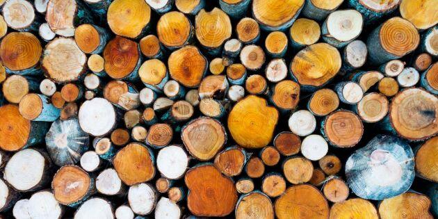 Skogskonjunkturen bromsar in