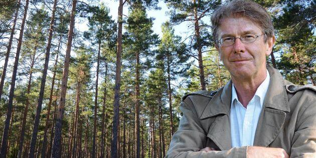 """""""Ovärdigt om den fjällnära skogen"""""""