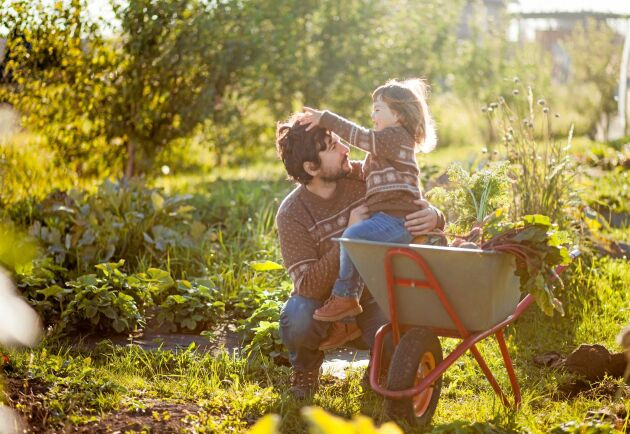 Ställ undan spaden. Det grävfria höstbruket gynnar alla.
