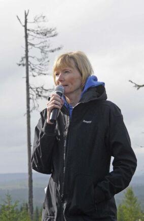 Lena Gustafsson, professor i ekologi vid SLU, framför ett monument över svensk naturvård i skogen, ett lämnat torrträd. Hon hävdar att svenskt skogsbruk är i en internationell strykklass när det gäller naturhänsyn i samband med avverkning. Foto: ROLF SEGE