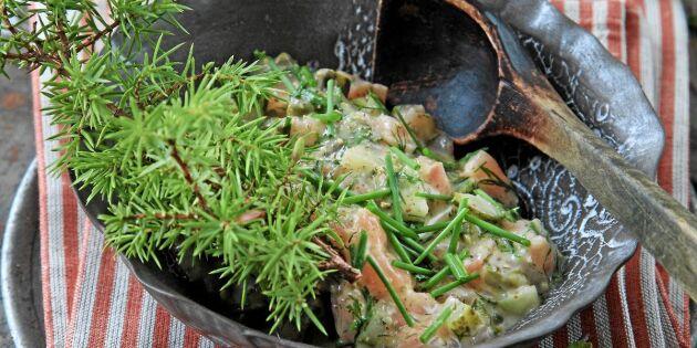 Tartar på gravad lax