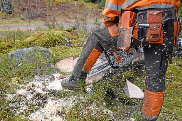 Den här sågen vänder sig främst till proffshuggare, eller möjligen självverksamma skogsägare med riktigt grov skog.