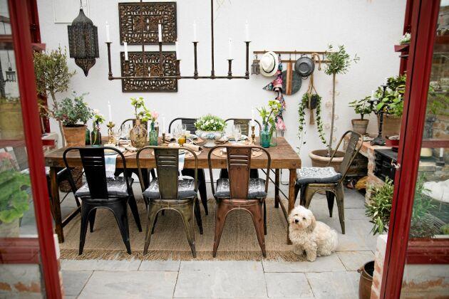 Susann Thörn har dukat upp och gästerna kan komma. Att bygga ett växthus och använda som matrum är i dag ganska vanligt. En mysig plats att umgås med vänner. Foto: Pia Gyllin