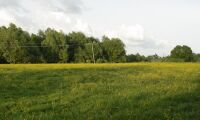 Prima jord får ny arrendator