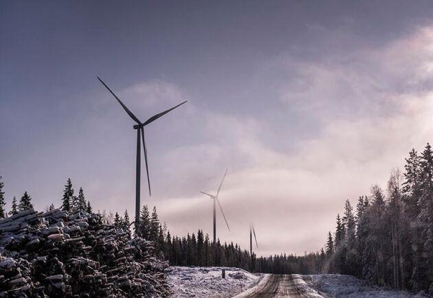 Arkivbild på vindkraftverk i Markbygden utanför Piteå.