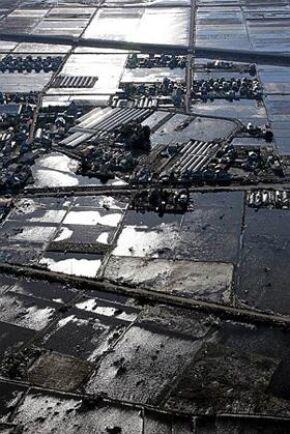 Skadat land. Fotot visar risfält i länet Miyagi som ännu tolv dagar efter tsunamin är översvämmade. Foto: All Over Press