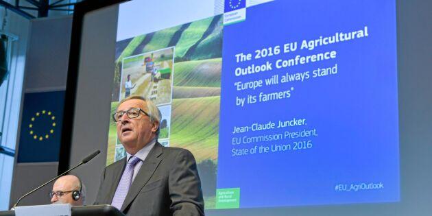 Jordbruk het potatis i EU:s budgetdebatt