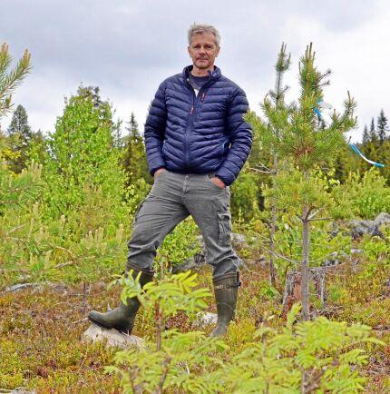 Anders Pettersson, förvaltare på Västerbottens allmänningsskogar.