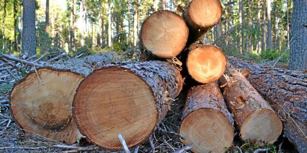 Skattedom seger för skogsägarna