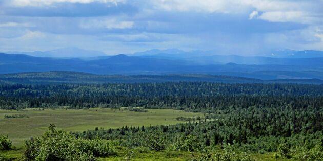 Många nya naturreservat förra året