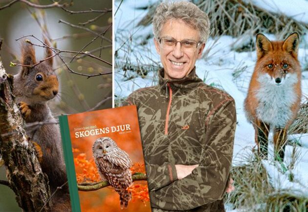 Håkan Steen trivs bland skogens vilda djur.