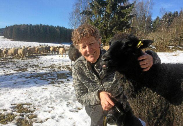"""""""Det har varit mycket diskussioner och frågor om olika strömedel i år"""", säger Karin Granström som är husdjursrådgivare vid Hushållningssällskapet i Värmland."""