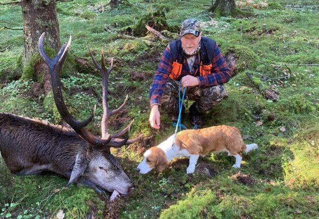 Kapital kronhjort som blev skjuten under älgjaktsveckan. Det var drevern Laylas första vilt på hennes allra första jakttdag i livet. Hundförare Maths Emanuelsson är också med på bilden.