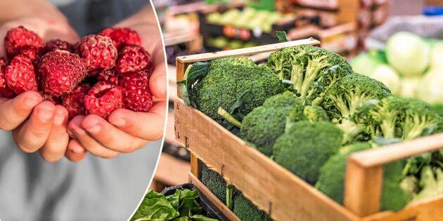 Mat i säsong: 11 svenska råvaror du ska äta i augusti