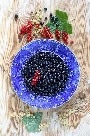 Blad från svarta vinbär doftar aromatiskt och är fina som smaksättning.