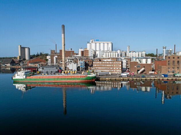 AAK i Karlshamn förbrukar cirka 300000 ton rapsfrö per år.