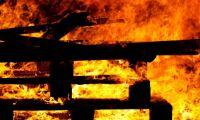 8 000 slaktsvin brann inne