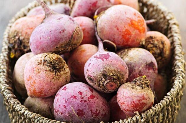 I Danmark råder akut brist på ekologiska grönsaker och frukt men även foderspannmål.