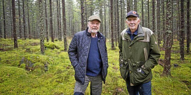 Skogsbolagets gallring orsakade stora skador på deras skog