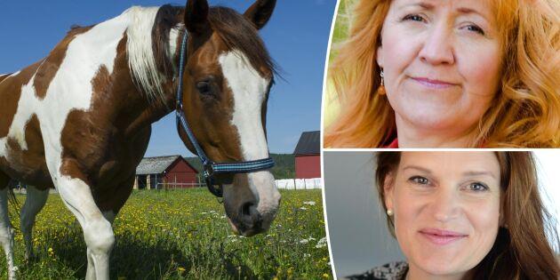 Undermåligt underlag om hästar och övergödning
