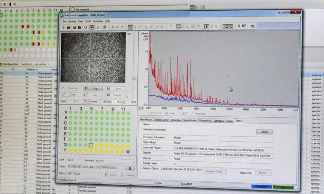 Spektrum. Med Maldi-Tof kan bakterierna jämföras med 6000 olika spektrum i en databas.