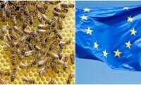 EU-kommissionen kritiseras för mörkande av bi-konflikt