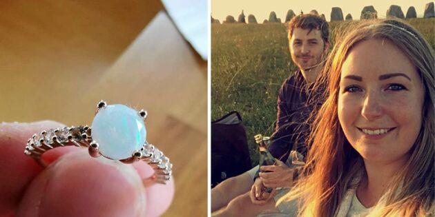 Kossor attackerade deras picknick –åt upp förlovningsringen
