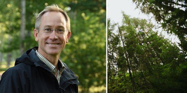 Dialog i stället för debatt – för skogens skull