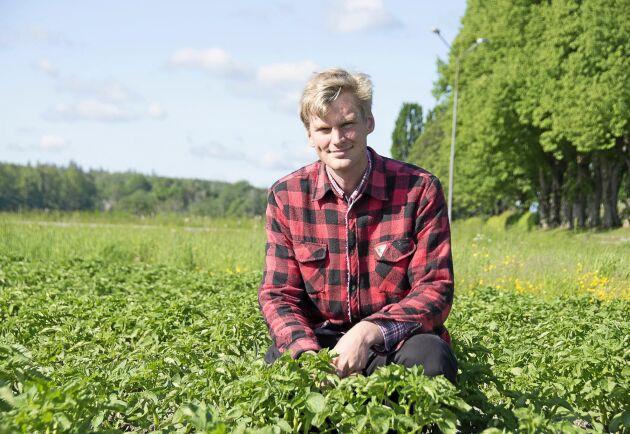 Ett kreativt hantverk - det är så Fredrik Wangsten ser på grönsaksodling.