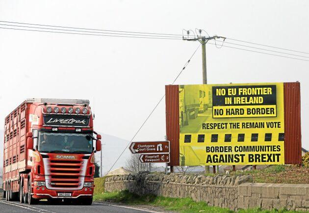 En av frågorna som ställer till det är vilken status gränsen mellan Irland och Nordirland ska få.