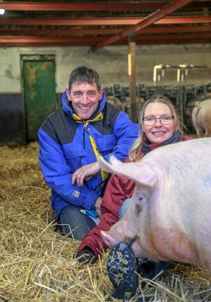Helena Vestin och Per Jonsson är veterinärer som föder upp grisar småskaligt och med eget gårdsslakteri, på Vänna gård.