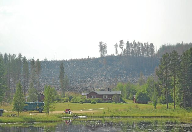 Det är nästa enbart skador på skog som anmälts efter sommarens bränder. Få byggnader eller fordon har skadats.