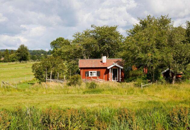Den gröna turismen kan stärkas av att fler svenskar stannar hemma i år.