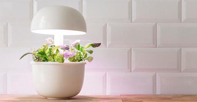 En finsk design har Plantui som ser liten och smidig ut.