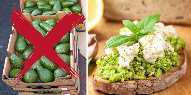 Miljösmarta alternativet till avokado – odlas med fördel i Sverige!