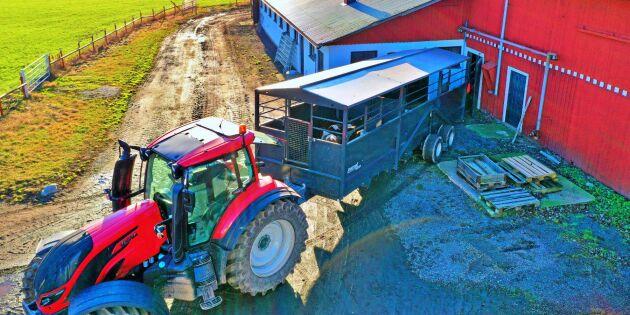 Metsjö börjar med djurvagnar