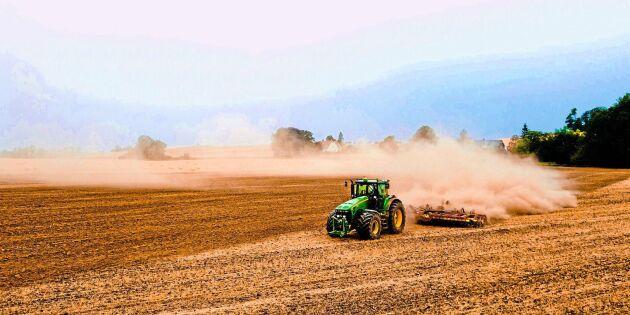 Slaktköer och utmätningar för finska bönder