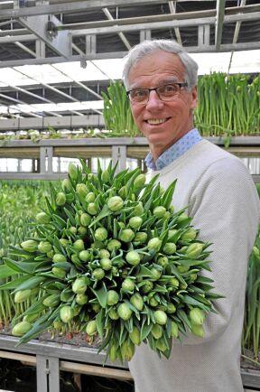 VD Håkan Alverbäck vill bygga fler växthus för tulpanodlingar.