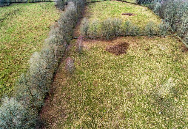 Betesmark som gödslats under lång tid med ett högt fodervärde men utan naturvärden.