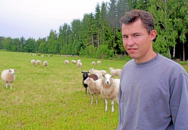 Antalet får på gården utanför Växjö kommer att utökas betydligt under de närmaste månaderna.
