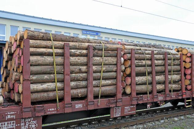 Stora mängder barkborreangripet som måste avverkas, har drivit ned priserna så att många skogsägare måste sälja utan vinst.