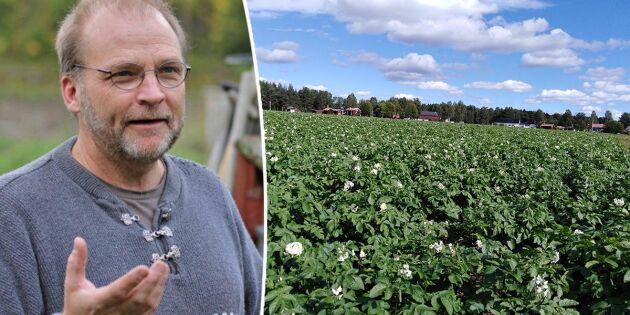 Upprop för potatis fick odlare att utöka