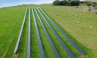 Solcellsparker samexisterar med jordbruket