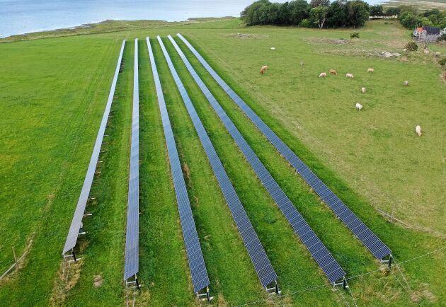 Solpaneler på åkermark kan bidra till att säkra generationsväxling och en levande landsbygd, anser debattören. (Bilden är inte från solcellsanläggningen i Skåne.)